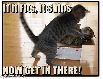 Funny Cat Priority Mail If It Fits, It Ships Refrigerator / Locker Magnet