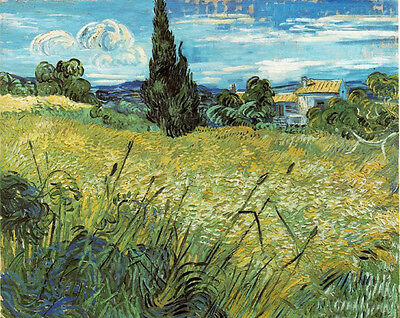 Oil painting Vincent Van Gogh - Green Wheat Field with Cypress landscape