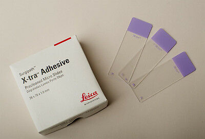 New Plain Microscope Slides - Leica Xtra Adhesive, Top Quality, free UK postage