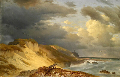 Nice huge Oil painting flying sea birds by the ocean with waves in sunset canvas