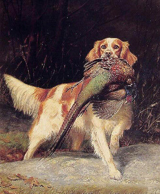 Oil painting dog Springer Spaniel with Pheasant in landscape canvas