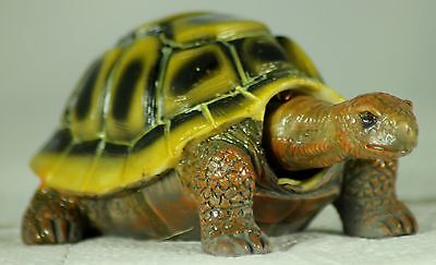 Nodding Tortoise, an Unusual Present or Gift for Tortoise Lovers