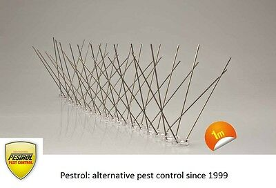 Bird Spikes (Polycarbonate base) 1 metre narrow base by Pestrol