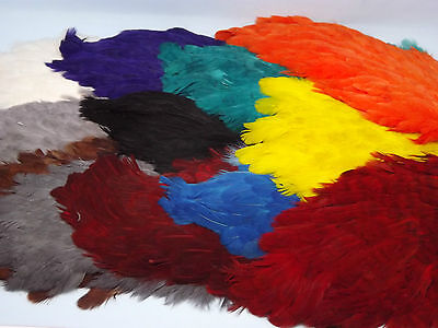Hen Saddle Cape, Grade A, Choice from 12 colours,Fly tying feathers,materials