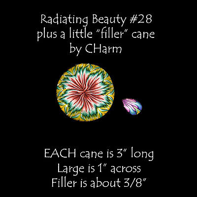 """2 Polymer clay canes Radiating Beauty and a Filler cane EACH 3"""" L by CHarm #28"""