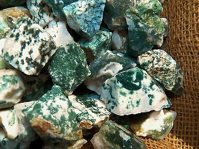 1000 Carat Lots of Tree Agate Rough - Plus a FREE Faceted Gemstone