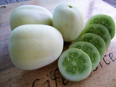 Cucumber Crystal Apple (50 seeds) Organic Heirloom from Life-Force Seeds