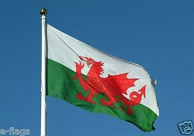 Giant Flag Of Wales Welsh Dragon Rugby 6 Nations Cymru