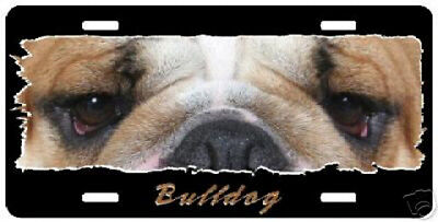 """Bulldog      """"The Eyes Have It""""    License Plate"""