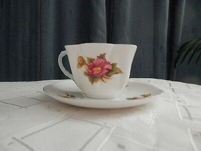 Shelley Begonia echina cup & saucer fluted edge red & yellow blue handle & rim