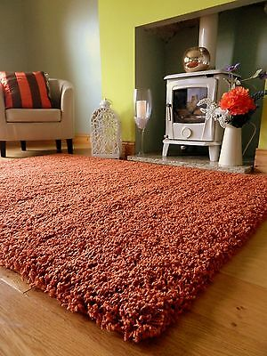 Medium Xx Large Rust Burnt Orange Thick Heavy Soft Quality Shaggy Pile Rug Mat