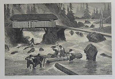 Antique Print. Wood-Floaters. Switzerland, 1881.