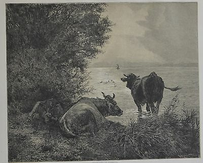 Antique Print. Early Morning on the Lake of Zurich. Switzerland, 1881.