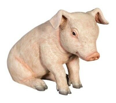 Pig Statue Pig let Sitting Baby Life Size Statue Farm Pig Hand Painted Cute