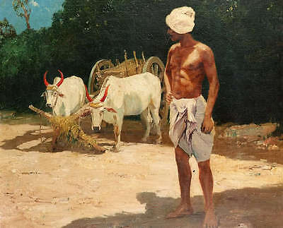 Oil painting strong male farmer with white cows cattles bullock-cart oxcart