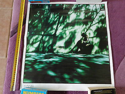 ANI DIFRANCO_Educated Guess_RARE PROMO POSTER_ships from AUS_36b