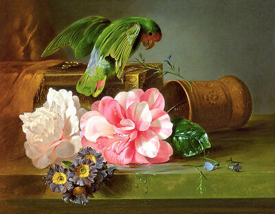 Art Oil painting Josef Schuster Still life with birds parrot nice flowes canvas