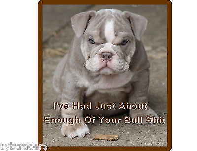 Funny English Bull  Dog Puppy Refrigerator / Tool Box / Magnet Man Cave