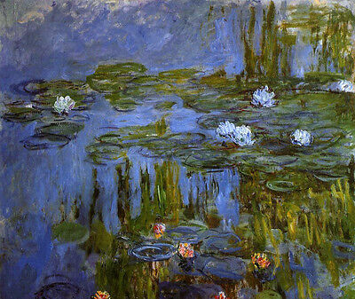 Beautiful Oil painting Claude Monet - Water-Lilies flowers in pond very nice