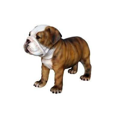 Bulldog Puppy Standing Multicolor Dog Statue Prop Display
