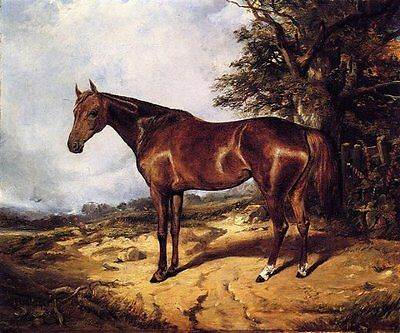 Art oil painting arthur-fitzwilliam-tait-thoroughbred red horse in landscape