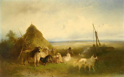 No framed art Oil painting Collie dog with sheeo goats in landscape canvas