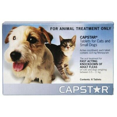 Capstar for Cats & Small Dogs Up To 11Kg - Blue 6 Pack Tablets Kills Fleas Fast