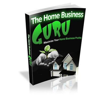 THE HOME BUSINESS GUIDE How To Start Your Home Based Web/Internet Business on CD