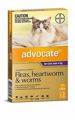 Advocate Flea & Worm Control for Cats over 4kg - 3 Pack