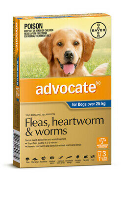 Advocate Flea & Worm Control for Dogs over 25kg - 3 Pack