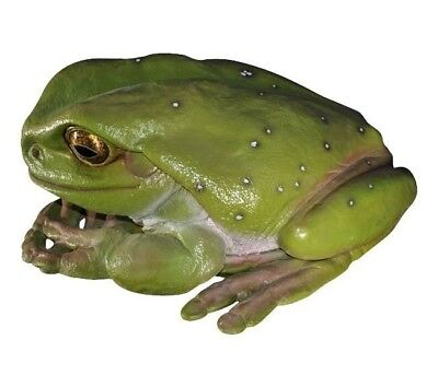 Frog Jumbo STATUE DISPLAY PROP  - Free Ship