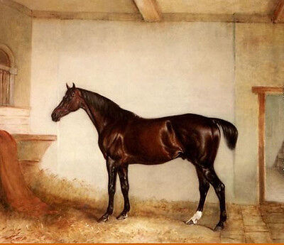 Stunning Oil painting Maroon horse in a Stable on canvas