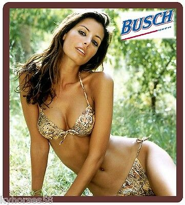 Busch Beer Sexy Model In Safari Bikini Refrigerator Magnet