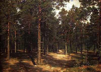 Oil painting Shishkin Ivan Ivanovich - The path among the pines view canvas