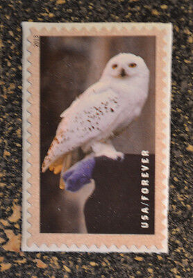 2013USA  #4830 New Forever Harry Potter - Hedwig the Owl Single Stamp  Mint NH
