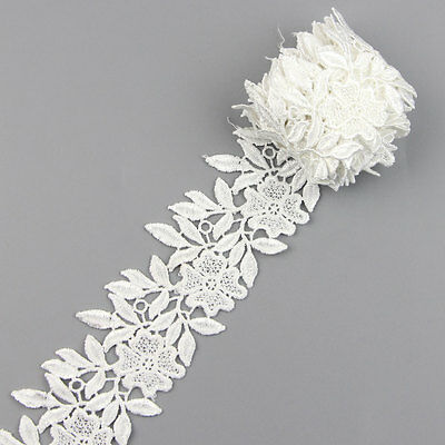 2 Yards Off-white Embroidered Net Lace Trim Trimming Ribbon Sewing Craft DIY