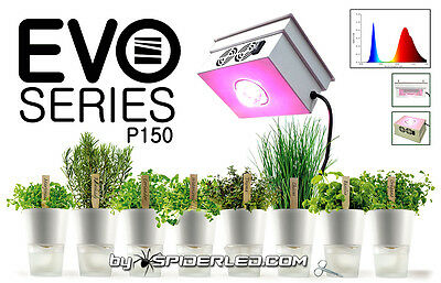 Lampada LED Coltivazione EVO Series by SpiderLed 150w   118000 Lumens Grow Light