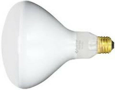 Pentair Replacement 79102200 Swimming Pool R40 120V 400W Light Flood Lamp Bulb