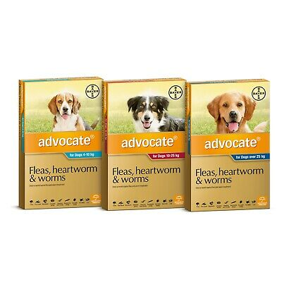 Advocate for Dogs - 6 Pack - Treats Fleas & Worms - All Sizes of Dog