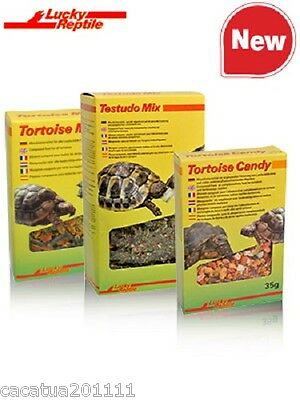 New Tortoise Food Recipe: Lucky Reptile Tortoise Candy 35G