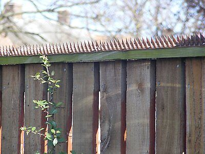 Fence Wall Spikes: BROWN • Effective AGAINST Humans, Cats, Foxes and Large Birds