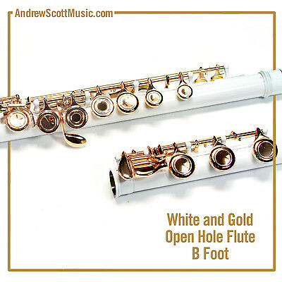 Flute - White & Gold with Open Holes and B Footjoint - Masterpiece