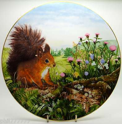 /Royal Doulton ~ Autumn Store ~ Country Wildlife Collection ~