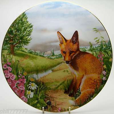 /Royal Doulton ~ Wildlife Watch ~ Country Wildlife Collection ~
