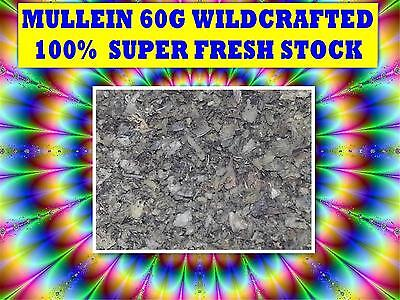 MULLEIN 60G TEA ☆100% Verbascum thapsis - WILDCRAFTED☆HERBAL☆DRIED HERB☆SAVE $$$