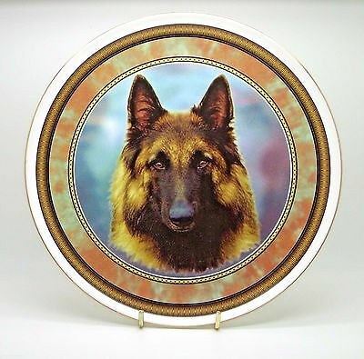 ~ Belgian Shepherd Tervueren ~ Bone China Dog Plate