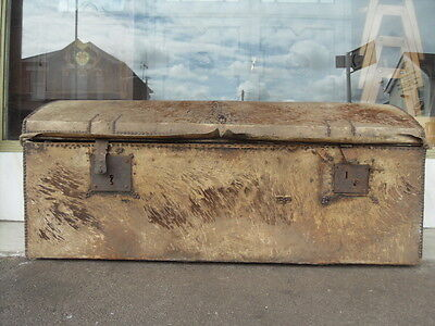 Medieval Style Victorian Mule Skin Blanket Box / Antique Leather Chest