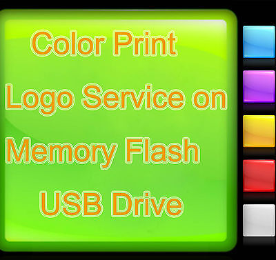 Color Print Logo Service on Light Color Memory Flash USB Drive Custom Design