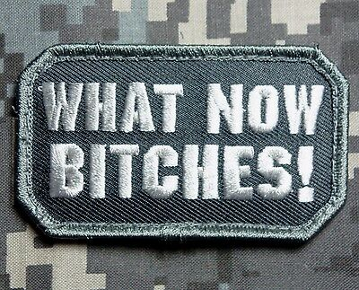 What Now B*tches! Usa Army Combat Morale Tactical Us Military Swat Hook Patch