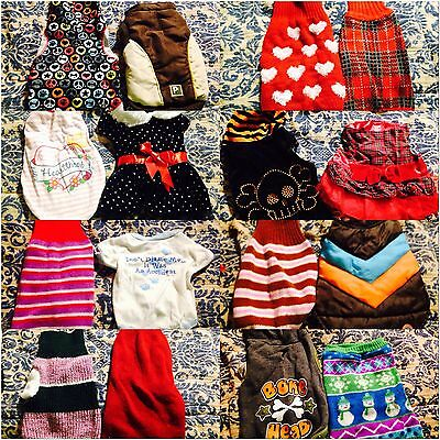 Lot Of 21 Dog Sweaters, Dresses Great For the Holidays Mostly Size Small